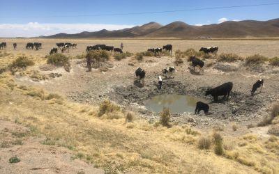 Nach 2 m kommt auch in der Wüste Grundwasser