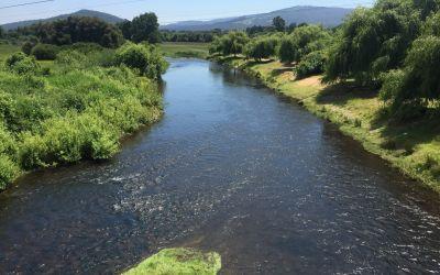 Saubere Flüsse