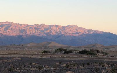 SandDünen am frühen Morgen