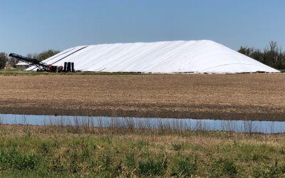 Gigantische MaisHaufen