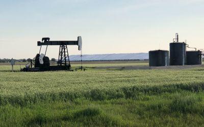 Ölförderung und 50'000to Mais dahinter