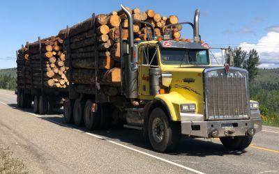 Tausende von HolzTransporten