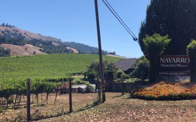 Viele WeinGüter