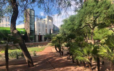Phoenix, University