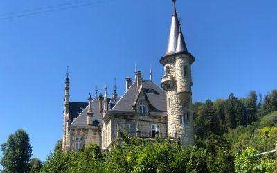 WeinSchloss bei Neftenbach
