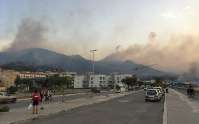 Die Brände wüten bis in die Stadt