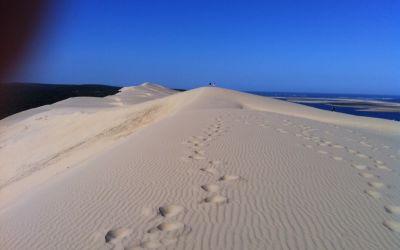 Les Dunes du Pilat