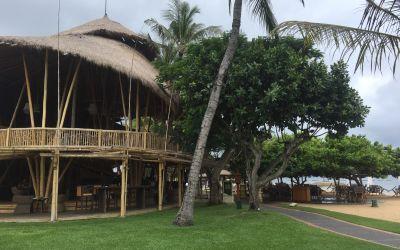 Das wunderschöne StrandRestaurant mit den EichHörnchen