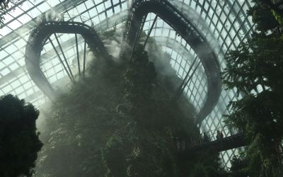 Singapur - CloudForest